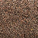 Read more about the article Lentil Cultivation in Pakistan / مسور کی کاشت