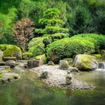 Read more about the article Rock Gardening