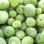 Read more about the article Grow Tinda / Apple Gourd in Pakistan – ٹینڈا کی کاشت